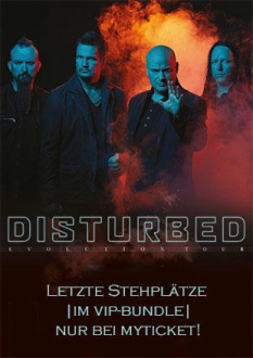 Disturbed, Evolution World Tour